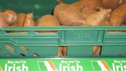 Irish economy
