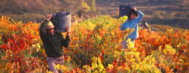 foreign seasonal workers
