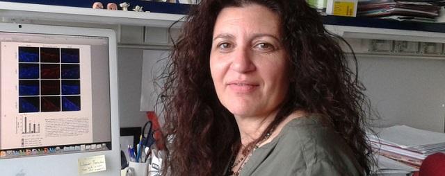 Ana Cuenda