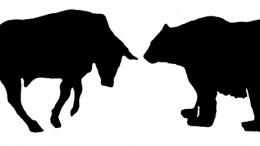 bull bear