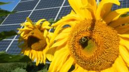 energía renovables recurso TC