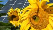 energía_renovables_recurso_TC
