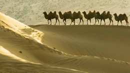 China-Silk-Road-02
