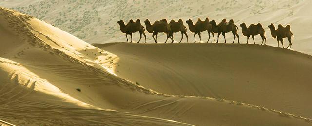 China Silk Road 02