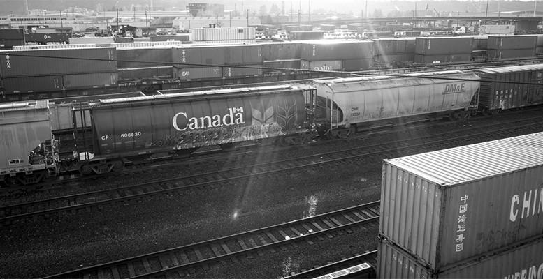 export import