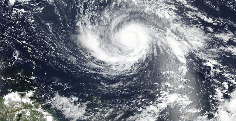 Cat bonds against Irma's hurricane