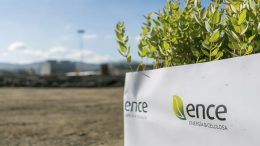 Ence: a new member in the Ibex 35 to replace DIA