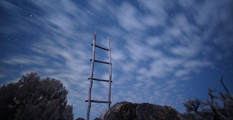 world growth ladder
