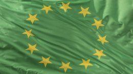 EU Green Deal: Bold headlines, elusive impact