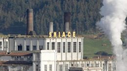 Sniace, one of the symbols of Spanish industry, closes: fails to meet obligations and seeks liquidation