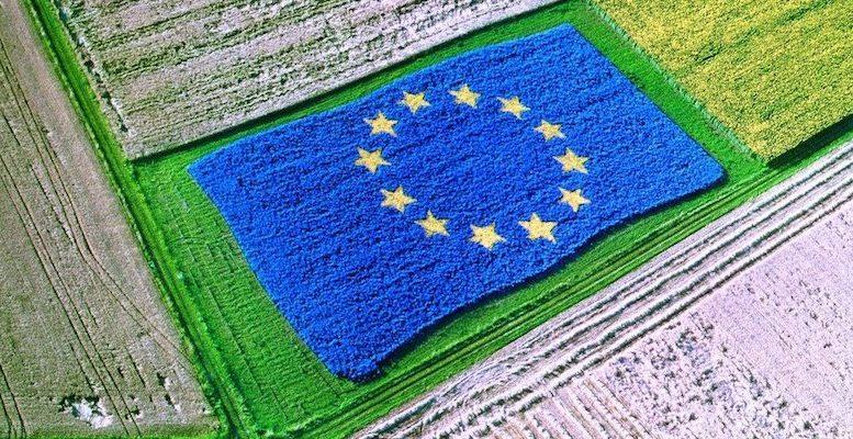 EU Budget the CAP beyond 2020 1073x480 1