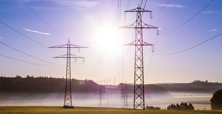 wholeshale electricity market