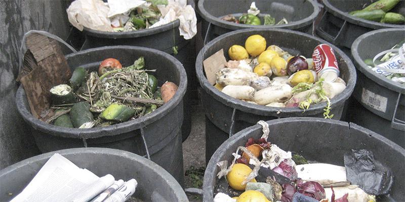 Todo español desperdicia 77 kilos de comida al año